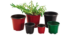 Flower Pots Supplier Produce Double Color Flower Pots for 25 Years It Application for Raise Plant